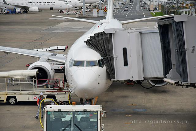 飛行機の望遠撮影例