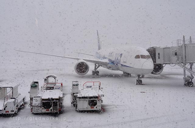 積雪の羽田空港