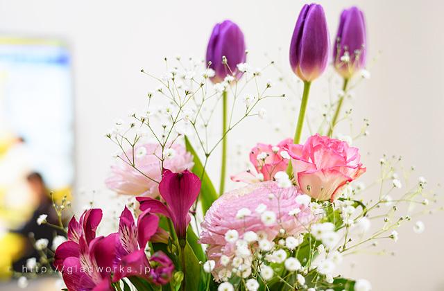 春の花のイメージ