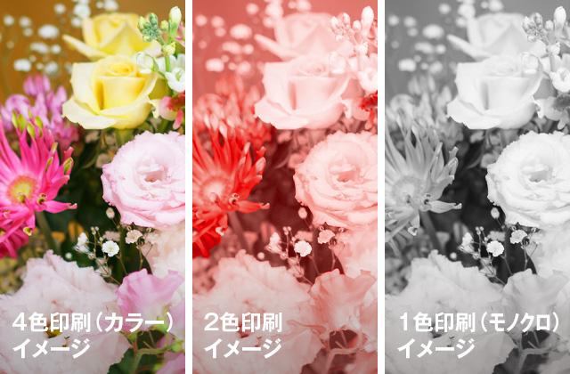 4色・2色・1色印刷イメージ